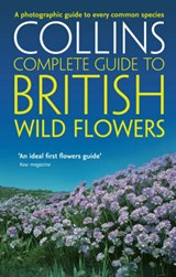 British Wild Flowers | Sterry |