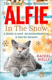 Alfie in the Snow (Alfie series, Book 5)