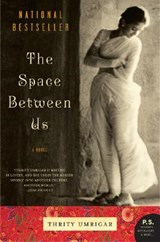 The Space Between Us | Thrity N. Umrigar |