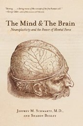 Mind and the Brain