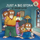 Just a Big Storm | Mercer Mayer |
