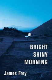 Bright Shiny Morning | James Frey |