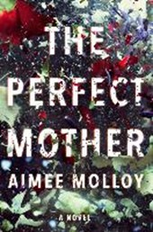 Perfect mother | Aimee Molloy |