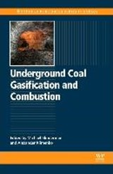 Underground Coal Gasification and Combustion | Alexander Klimenko |