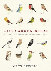 Our Garden Birds | Matt Sewell |