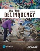 Juvenile Delinquency Access Code