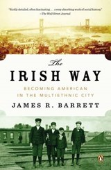 The Irish Way | James R. Barrett |