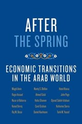 After the Spring | Magdi Amin |