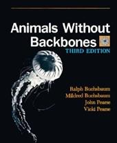 Animals Without Backbones 3e