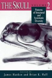 The Skull V 2 (Paper)