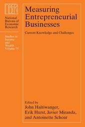 Measuring Entrepreneurial Businesses