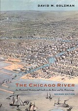 The Chicago River | David M. Solzman |