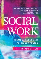 Social Work: Themes, Issues and Critical Debates | Robert Adams |
