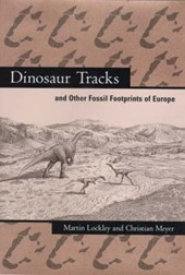 Dinosaur Tracks and Other Fossil Footprints of Europe