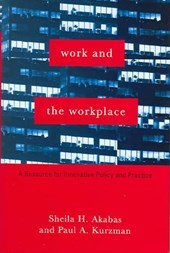 Work and the Workplace - A Resource for Innovative  Policy and Practice | Sheila H Akabas |