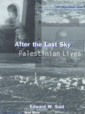 After the Last Sky