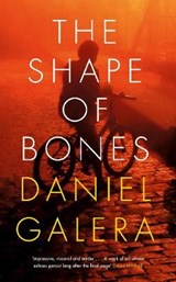Shape of Bones | Daniel Galera |
