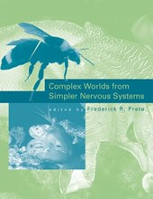 Complex Worlds from Simpler Nervous Systems
