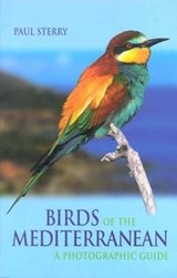 Birds of the Mediterranean | Paul Sterry |