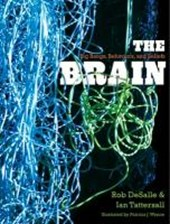 The Brain - Big Bangs, Behaviors and Beliefs