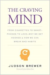 Craving mind : from cigarettes to smartphones to love