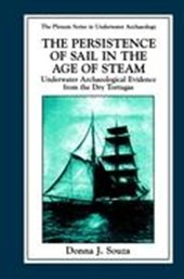 The Persistence of Sail in the Age of Steam