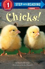Chicks | Sandra Horning |