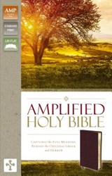 Amplified Bible-Am | Zondervan |