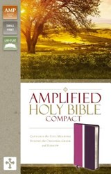 Amplified Holy Bible, Compact | Zondervan |