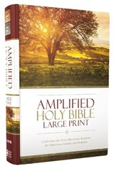 Amplified Holy Bible | Zondervan |