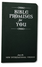 Bible Promises for You