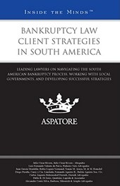Bankruptcy Law Client Strategies in South America