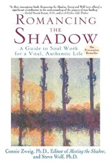 Romancing the Shadow | Connie Zweig |