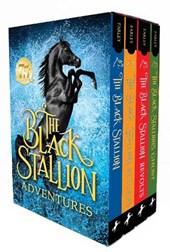 The Black Stallion Adventures Set