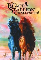Black Stallion Challenged