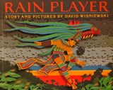 Rain Player | David Wisniewski |