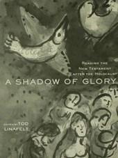 A Shadow of Glory