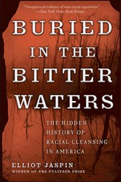 Buried in the Bitter Waters | Elliot Jaspin |