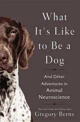 What It's Like to Be a Dog | Gregory Berns |