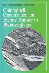 Chlorophyll Organization and Energy Transfer in Photosynthesis