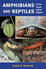 Amphibians and Reptiles of the Great Lakes Region | James H. Harding |