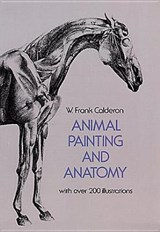 Animal painting and anatomy | W. Frank Calderon |