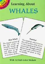 Learning about Whales [With Whales] | Sy Barlowe |