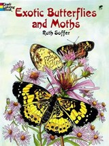Exotic Butterflies and Moths | Ruth Soffer |