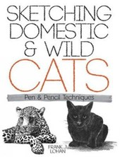 Sketching Domestic and Wild Cats