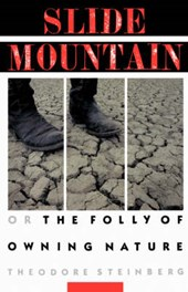 Slide Mountain - Or the Folly of Owning Nature (Paper)
