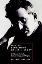 Walter Benjamin's Other History - Of Stones, Animals, Human Beings & Angels