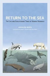 Return to the Sea - The Life and Evolutionary Times of Marine Mammals