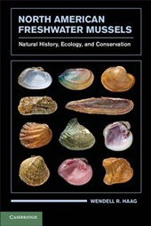 North American Freshwater Mussels