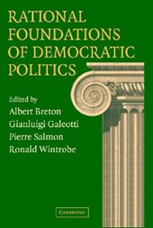 Rational Foundations of Democratic Politics